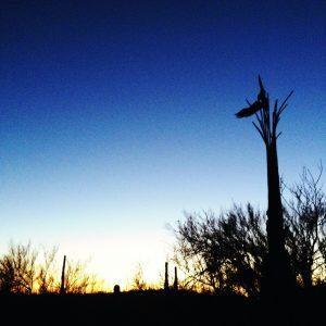 Goodbye Tucson!!