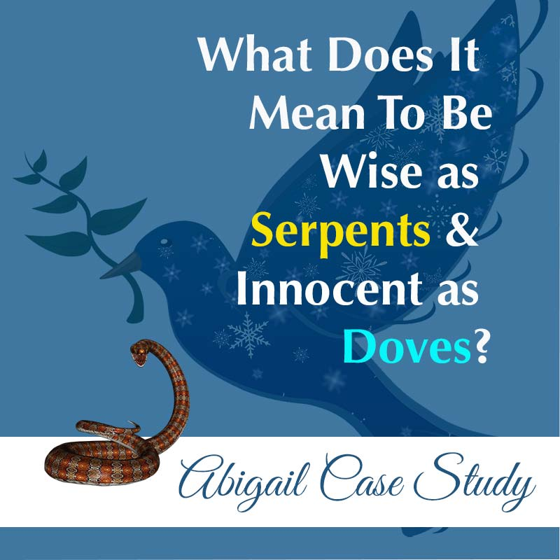wise as serpent innocent as doves Abigail image